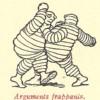 Arguments frappants